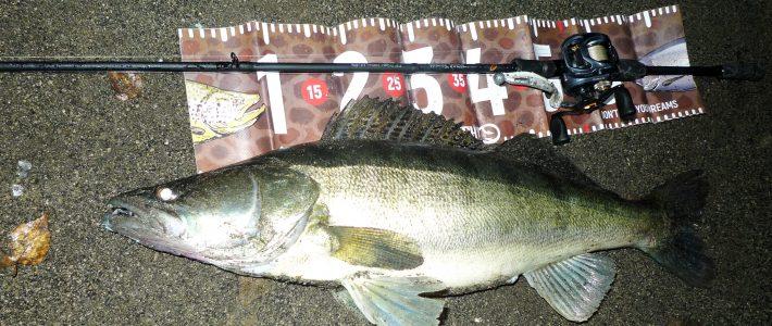 Риболов 2019 – спининг, а вече и кастинг