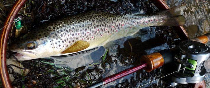Yarie Blender – японска  блесна за български риби