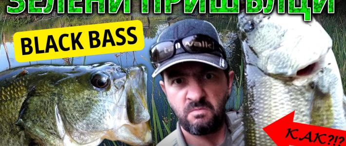 Риболов на блек басове